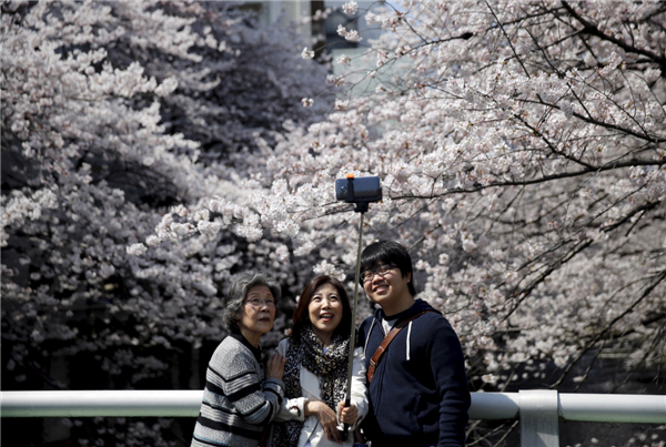 Welcome cherry blossom season in Tokyo